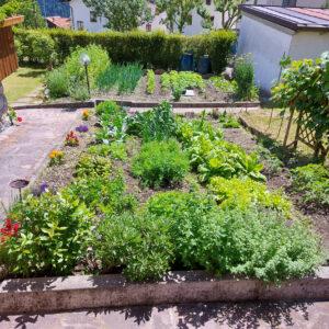 Il nostro orto, disponibile anche per gli ospiti